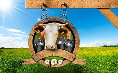 Китайская компания ищет партнеров в России и Украине для поставок молочной продукции
