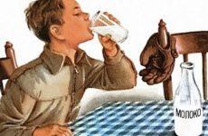Готовится законопроект о молоке для школьников