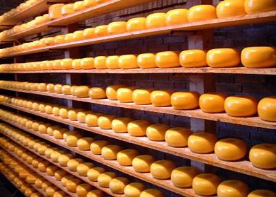 Экспорт сыра