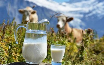 Польза молока