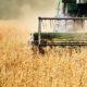 Как повлияет «торговая война» объявленная США на российской сельскохозяйственный рынок