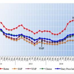Цены на молочную продукцию в мире укрепляются
