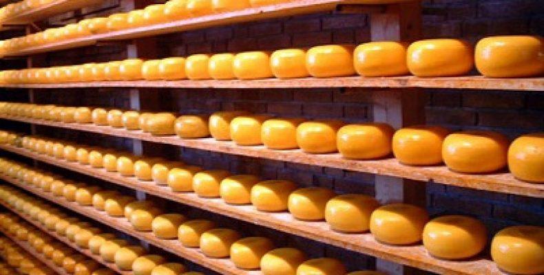 Европа и Беларусь обеспечат основной рост поставок сыров