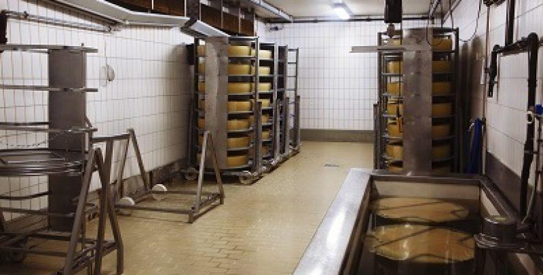 Общая технология сыра