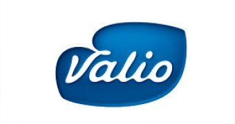 Valio начинает экспортировать мороженое
