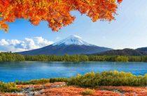 Получатели «дальневосточных гектаров» получили 246 миллионов рублей господдержки