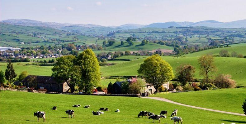 Британские фермеры настояли на сохранении на рынке сезонных рабочих из ЕС