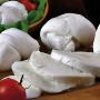 В Астрахани налажено производство элитных сыров