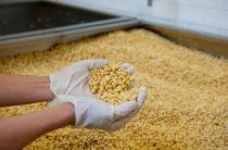 Отказ Китая от сои из США дает большой шанс для АПК Дальнего Востока
