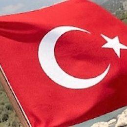 Турция скоро проверит российских производителей мяса и молока