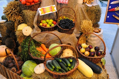 сельхозпродукция экспорт