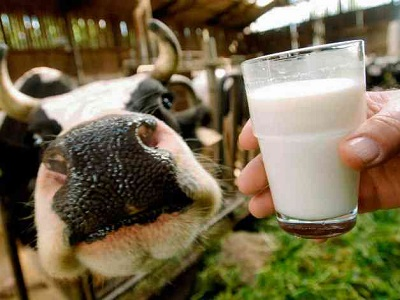 Производители молока
