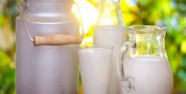 Сибирские сельхозпроизводители наблюдают резкое снижение спроса на молочную продукцию и свежие овощи