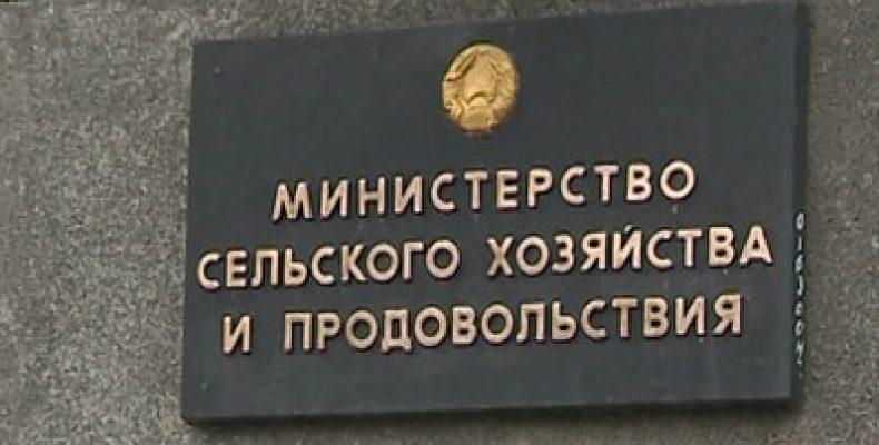 Минсельхозпрод Беларуси об ограничениях Россельхознадзора: постоянно какие-то непонятные претензии