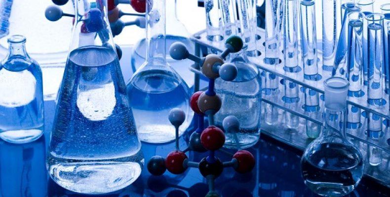 Проект межгосударственного стандарта на метод определения сухого молока