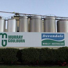 Murrey Goulburn может потерять звание крупнейшего переработчика молочных продуктов