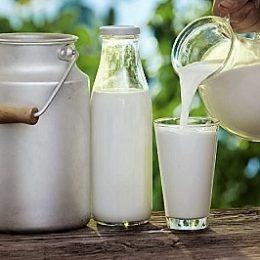 Производство стерилизованного молока