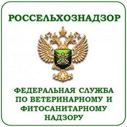 Россельхознадзор усиливает контроль за продукцией двух молочных комбинатов Беларуси