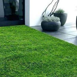 Искусственная трава для декоративного использования