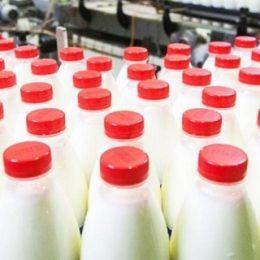 Россельхознадзор ужесточит контроль за перевозками продукции между странами ЕАЭС