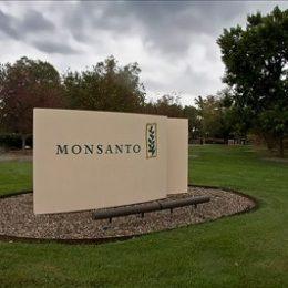 Monsanto годами продавала запрещенные химикаты, опасные для здоровья