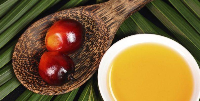 Потребителей хотят информировать о содержании пальмового масла в молоке «крупными буквами»