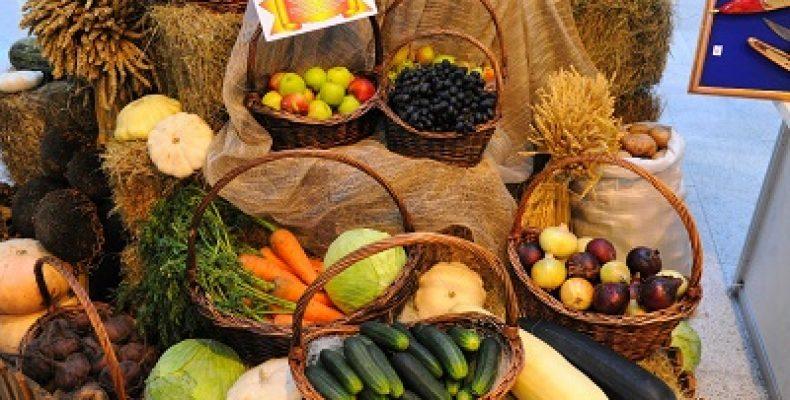 Белорусский экспорт продовольствия в РФ снизился