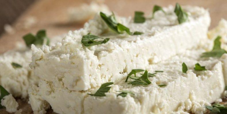 Сыр из козьего молока в домашних условиях: мягкий, твердый, пористый, плавленый, брынза — простые рецепты с пошаговым приготовлением. Козий сыр: пищевая ценность, полезные свойства и рецепт приготовления