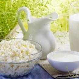 Всё, что нужно знать о сепарировании молока на производстве и можно ли самому обезжирить продукт? Полезные советы. Сепарирование молока